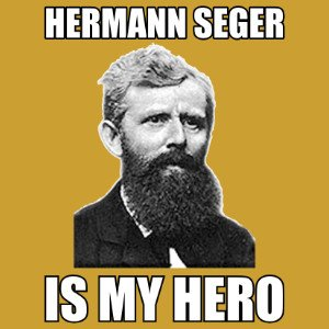 hermann seger is my hero shirt