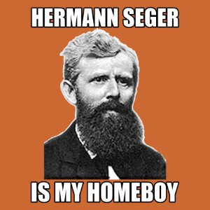 hermann seger is my homeboy shirt